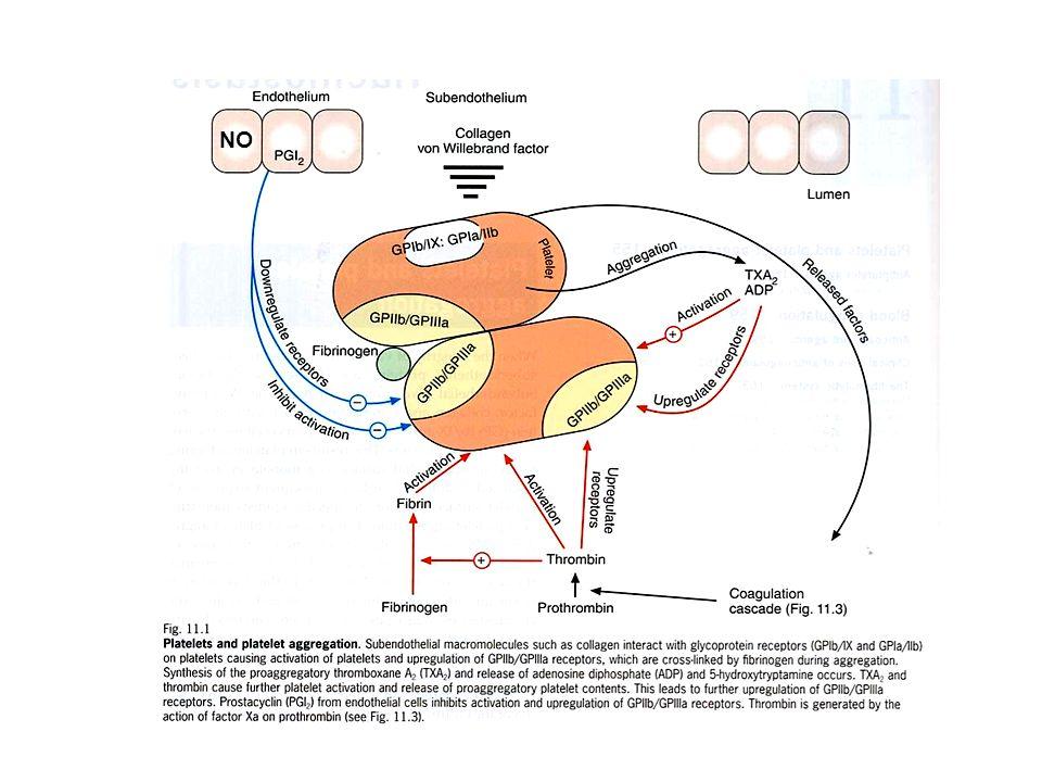 Indicazioni per la terapia antiaggregante Prevenzione secondaria dellinfarto miocardico (ASA, clopidogrel) Prevenzione dellinfarto miocardico in pazienti con angina stabile o vasculopatie periferiche, soprattutto in quei pazienti con molti fattori di rischio (ASA, clopidogrel) Prevenzione dellictus e dei TIA (ASA spesso in associazione con dipiridamolo) Dopo fibrinolisi o angioplastica percutanea (Abciximab ed altri inibitori dei recettori GPIIb/IIIA