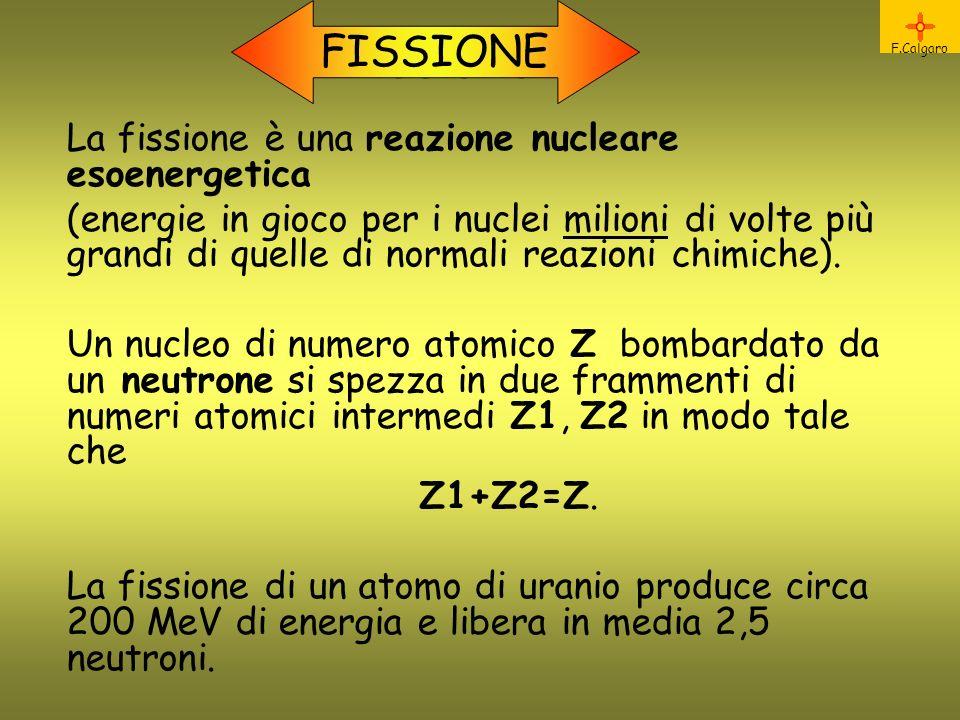 F.Calgaro Fissione FISSIONE La fissione è una reazione nucleare esoenergetica (energie in gioco per i nuclei milioni di volte più grandi di quelle di