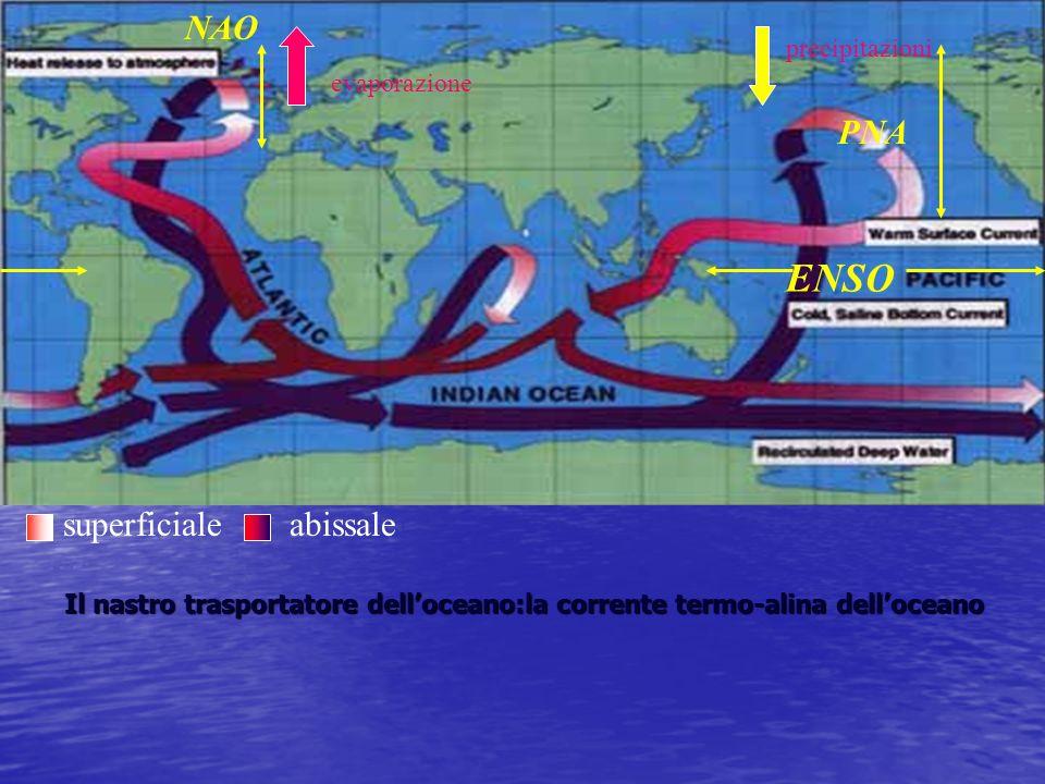 superficialeabissale evaporazione precipitazioni ENSO NAO PNA Il nastro trasportatore delloceano:la corrente termo-alina delloceano