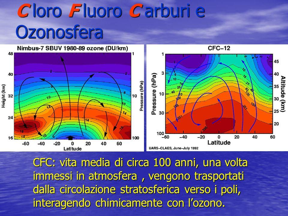 C loro F luoro C arburi e Ozonosfera CFC: vita media di circa 100 anni, una volta immessi in atmosfera, vengono trasportati dalla circolazione stratos