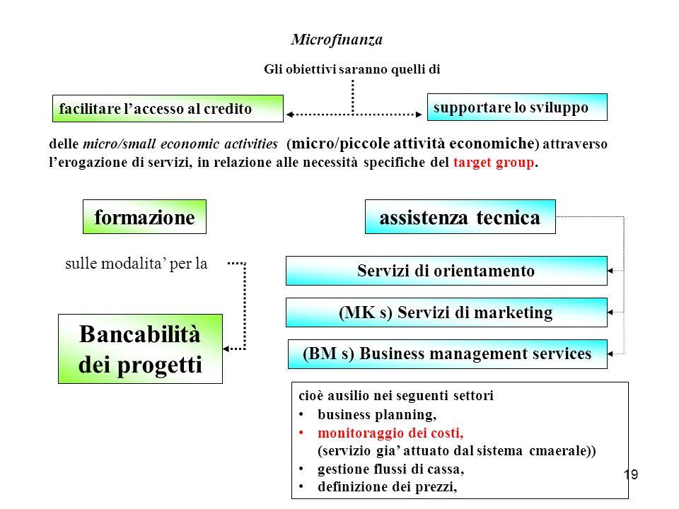 19 facilitare laccesso al credito Bancabilità dei progetti Microfinanza (BM s) Business management services Servizi di orientamento (MK s) Servizi di