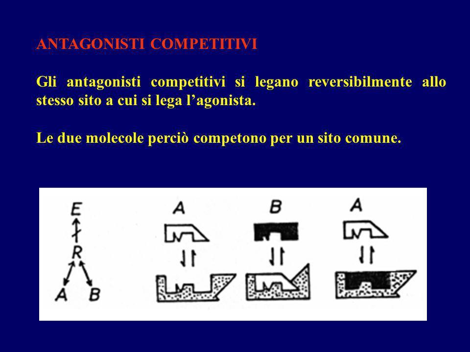 ANTAGONISTI COMPETITIVI Gli antagonisti competitivi si legano reversibilmente allo stesso sito a cui si lega lagonista. Le due molecole perciò competo