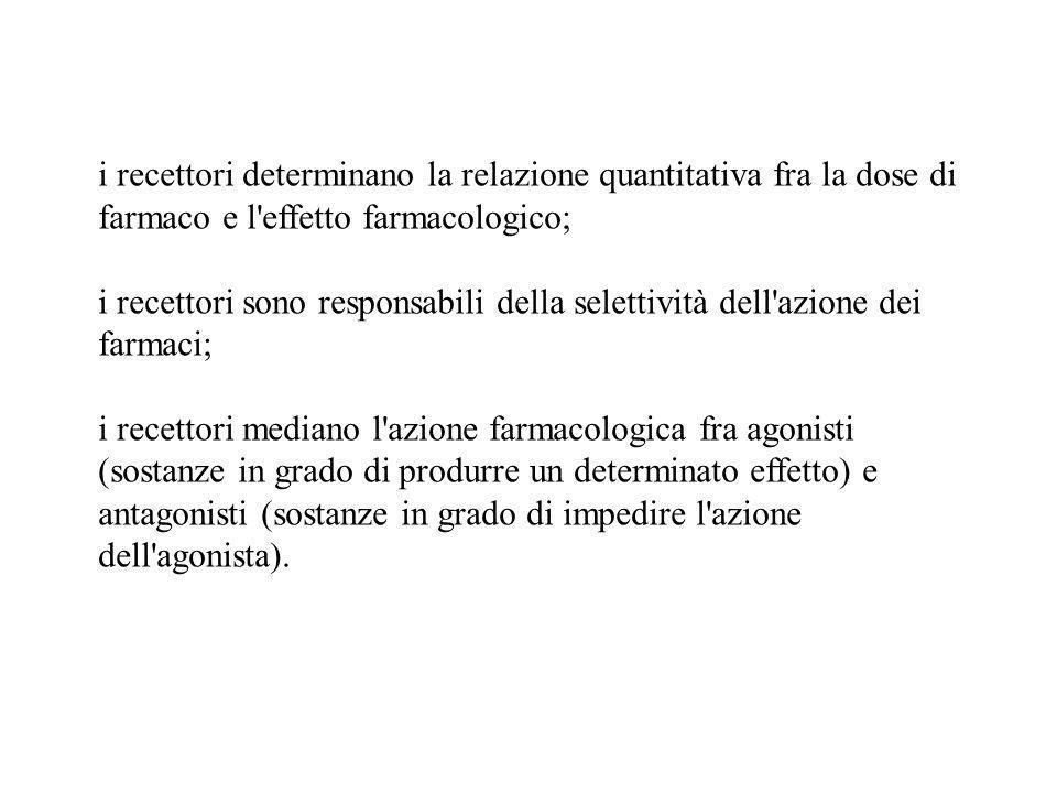 i recettori determinano la relazione quantitativa fra la dose di farmaco e l'effetto farmacologico; i recettori sono responsabili della selettività de