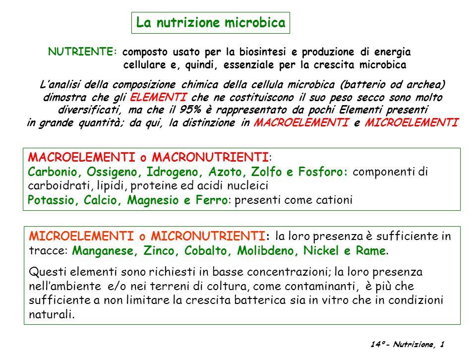 MICROELEMENTI o MICRONUTRIENTI: la loro presenza è sufficiente in tracce: Manganese, Zinco, Cobalto, Molibdeno, Nickel e Rame. Questi elementi sono ri