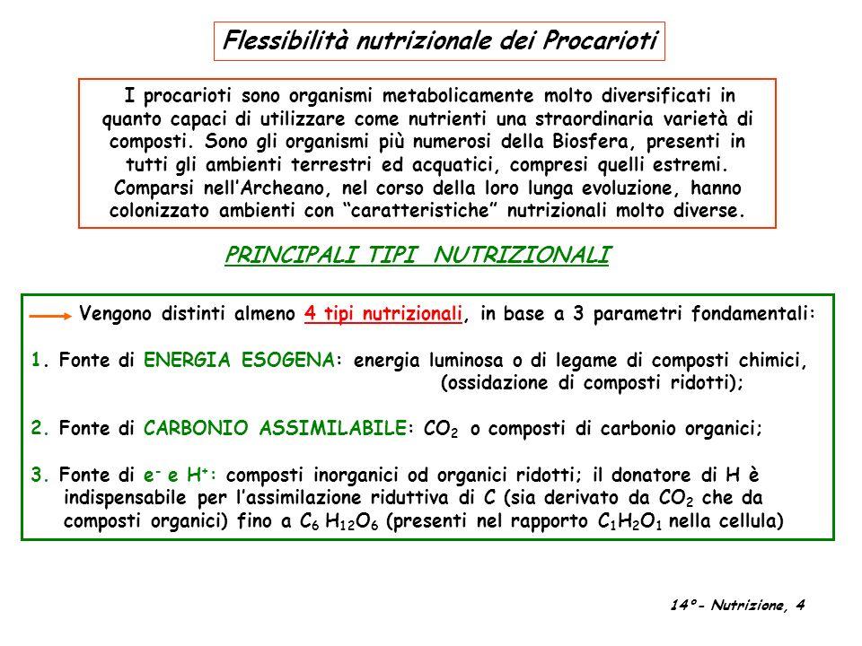 Vengono distinti almeno 4 tipi nutrizionali, in base a 3 parametri fondamentali: 1. Fonte di ENERGIA ESOGENA: energia luminosa o di legame di composti