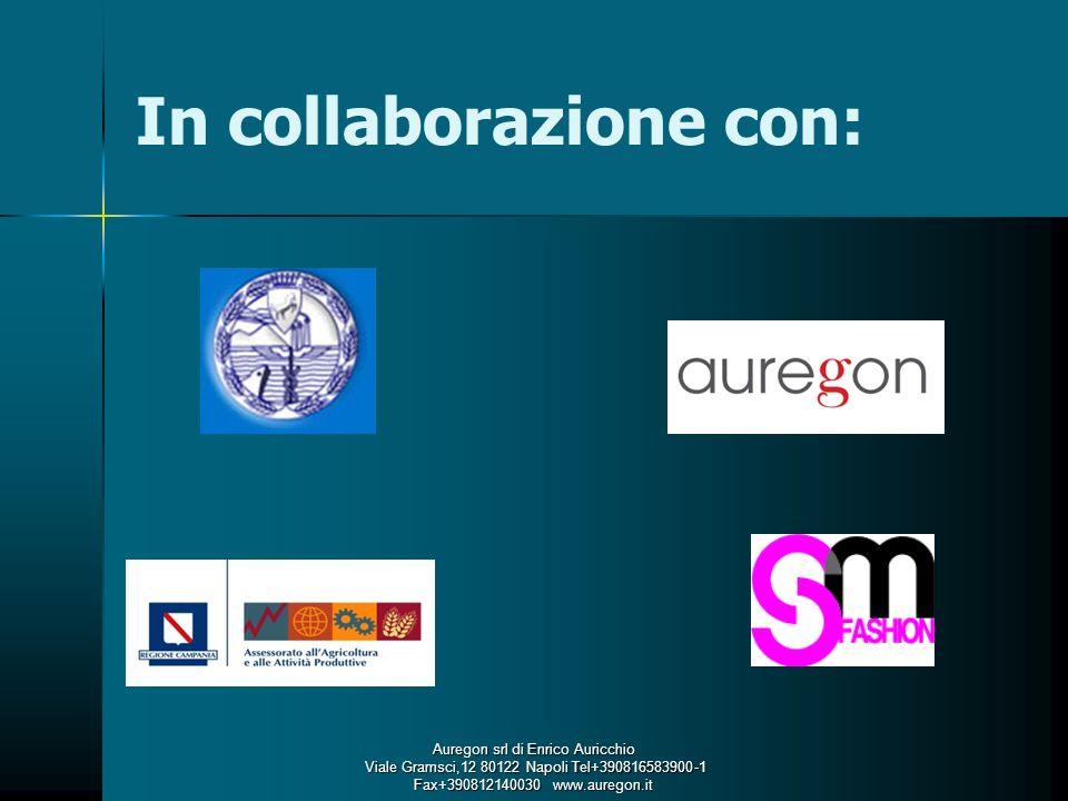 In collaborazione con: Auregon srl di Enrico Auricchio Viale Gramsci,12 80122 Napoli Tel+390816583900-1 Fax+390812140030 www.auregon.it Viale Gramsci,12 80122 Napoli Tel+390816583900-1 Fax+390812140030 www.auregon.it