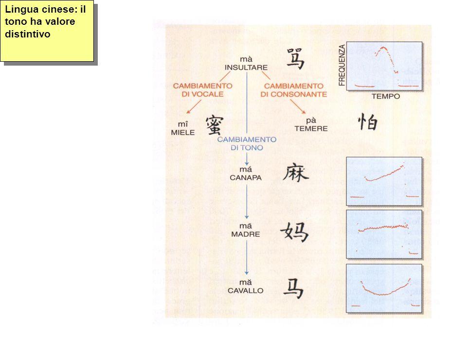Lingua cinese: il tono ha valore distintivo