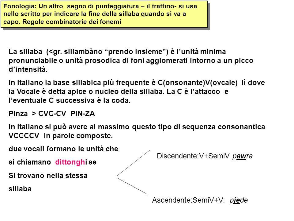 Fonologia: Un altro segno di punteggiatura – il trattino- si usa nello scritto per indicare la fine della sillaba quando si va a capo. Regole combinat