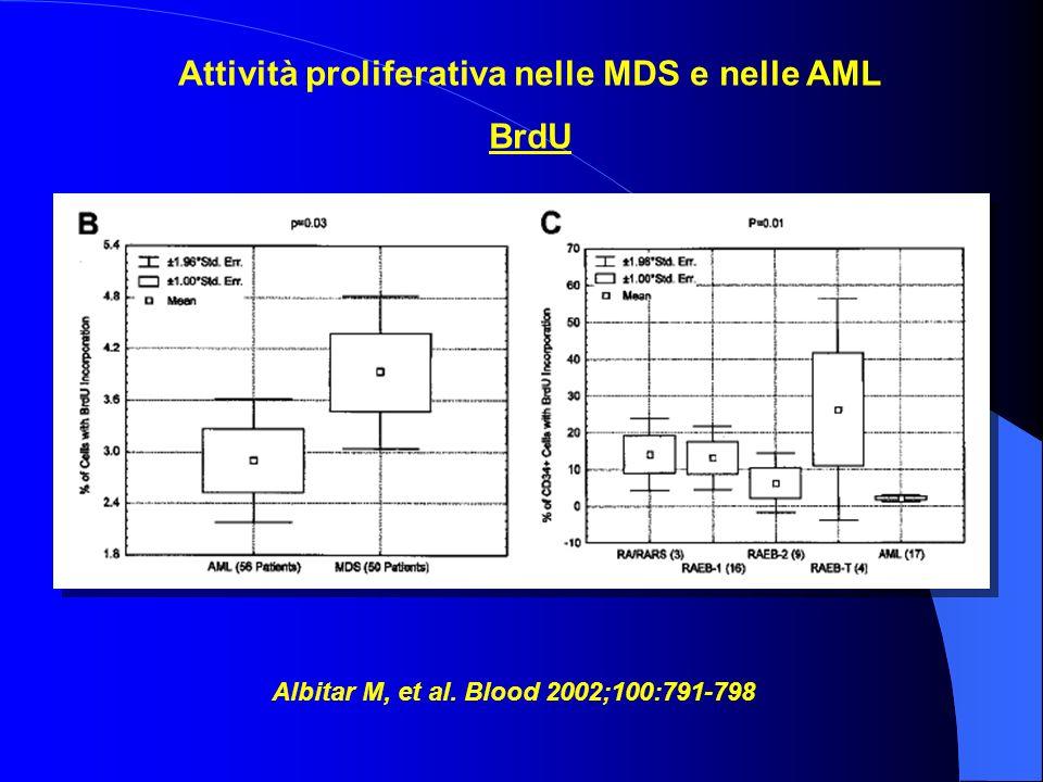 Attività proliferativa nelle MDS e nelle AML BrdU Albitar M, et al. Blood 2002;100:791-798