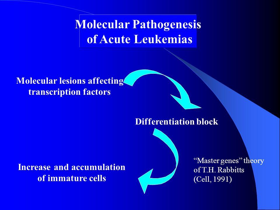 Molecular Pathogenesis of Acute Leukemias Molecular lesions affecting transcription factors Differentiation block Increase and accumulation of immatur