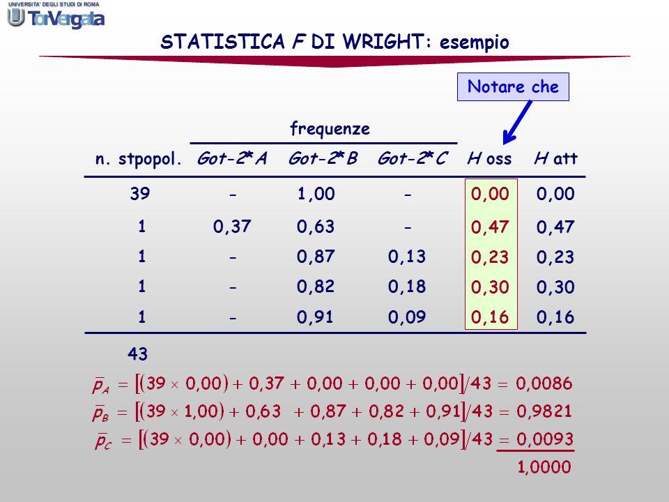0,00 0,17 0,09 0,06 frequenze n. stpopol. Got-2*A Got-2*B Got-2*C H oss H att 39 - 1,00 - 10,37 0,63 - 1 - 0,87 0,13 1 - 0,82 0,18 1 - 0,91 0,09 0,00
