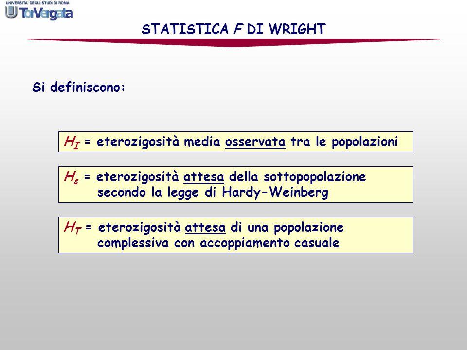 Si definiscono: STATISTICA F DI WRIGHT H I = eterozigosità media osservata tra le popolazioni H s = eterozigosità attesa della sottopopolazione second