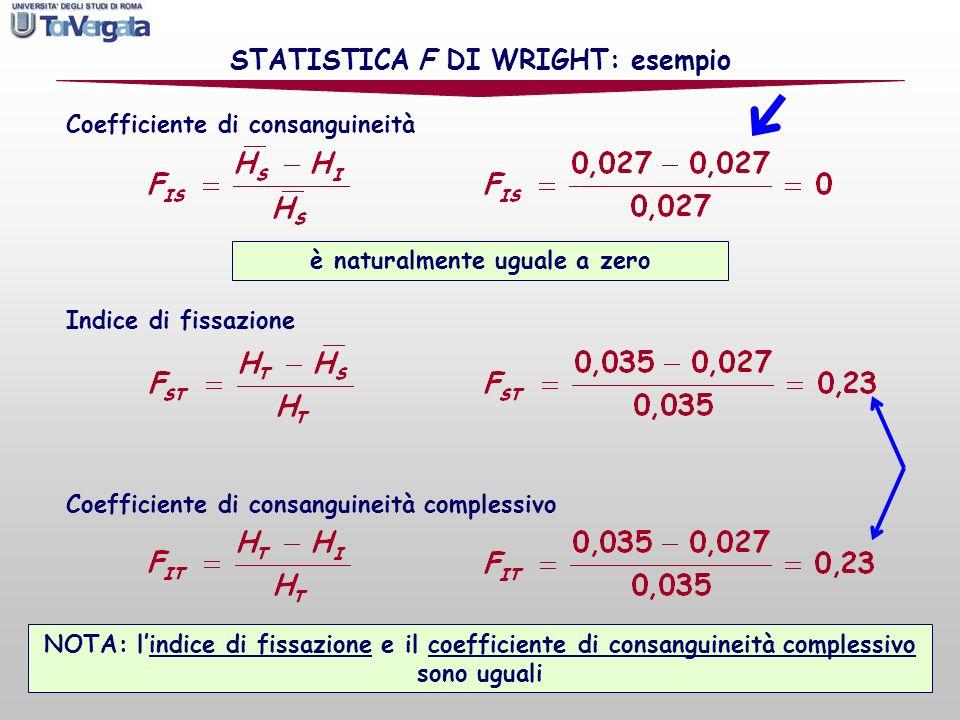 Indice di fissazione Coefficiente di consanguineità Coefficiente di consanguineità complessivo STATISTICA F DI WRIGHT: esempio NOTA: lindice di fissaz