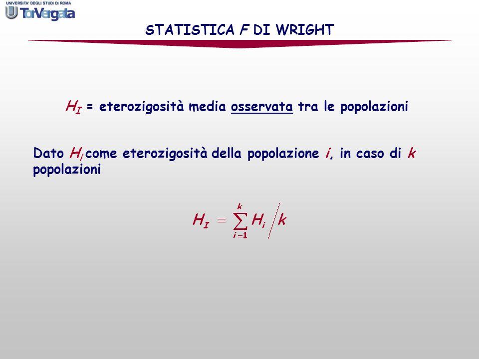 H s = eterozigosità attesa della sottopopolazione secondo la legge di Hardy-Weinberg STATISTICA F DI WRIGHT Dato p i,s come frequenza dellallele i-esimo della sottopopolazione s, e H s come eterozigosità attesa della sottopopolazione secondo la legge di Hardy-Weinberg, allora e è la media delle H s di tutte le sottopopolazioni