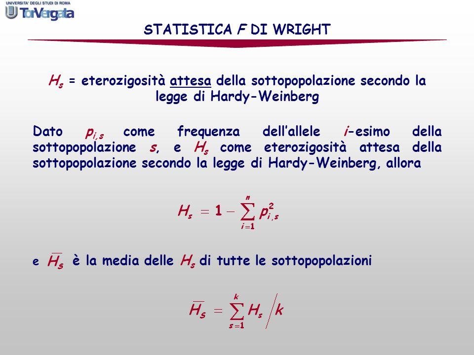 H s = eterozigosità attesa della sottopopolazione secondo la legge di Hardy-Weinberg STATISTICA F DI WRIGHT Dato p i,s come frequenza dellallele i-esi