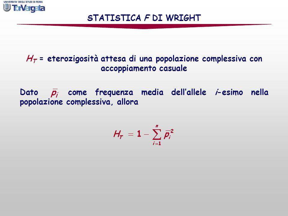 H T = eterozigosità attesa di una popolazione complessiva con accoppiamento casuale STATISTICA F DI WRIGHT Dato come frequenza media dellallele i-esim