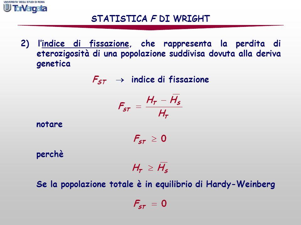 2) lindice di fissazione, che rappresenta la perdita di eterozigosità di una popolazione suddivisa dovuta alla deriva genetica STATISTICA F DI WRIGHT