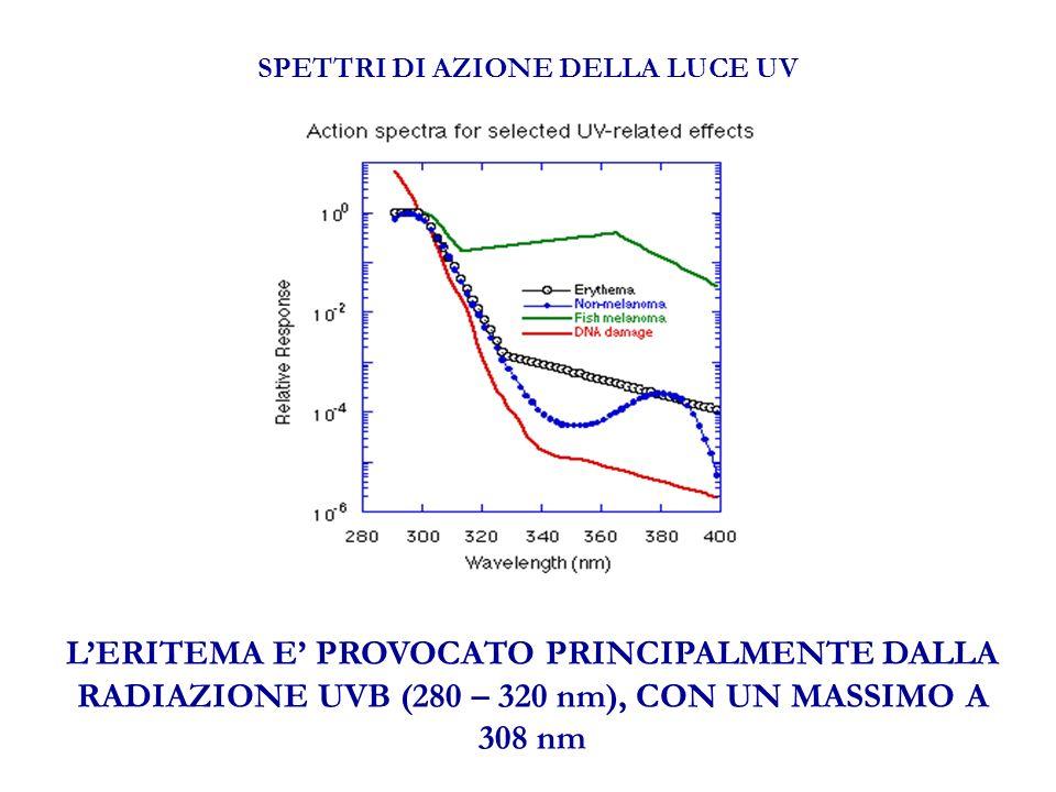 SPETTRI DI AZIONE DELLA LUCE UV LERITEMA E PROVOCATO PRINCIPALMENTE DALLA RADIAZIONE UVB (280 – 320 nm), CON UN MASSIMO A 308 nm