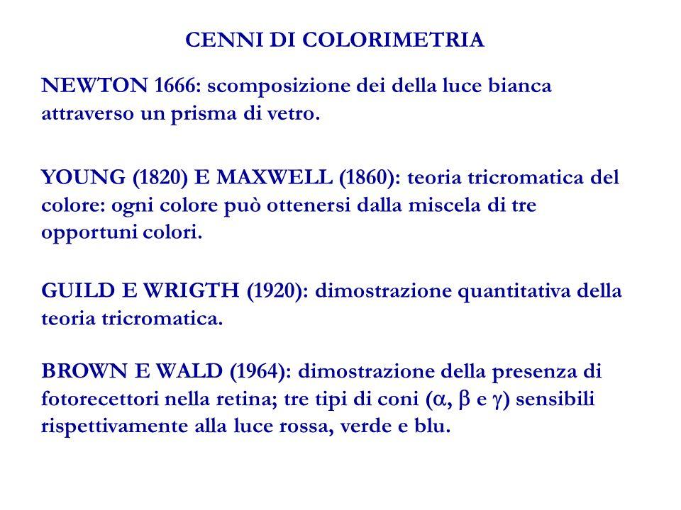 CENNI DI COLORIMETRIA NEWTON 1666: scomposizione dei della luce bianca attraverso un prisma di vetro.