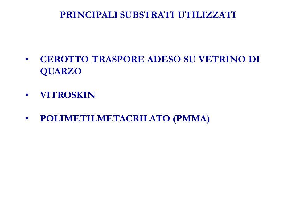 CORRELAZIONE TRA SPF STRUMENTALE E SPF IN VIVO Tratto da: Pissavini, et al.