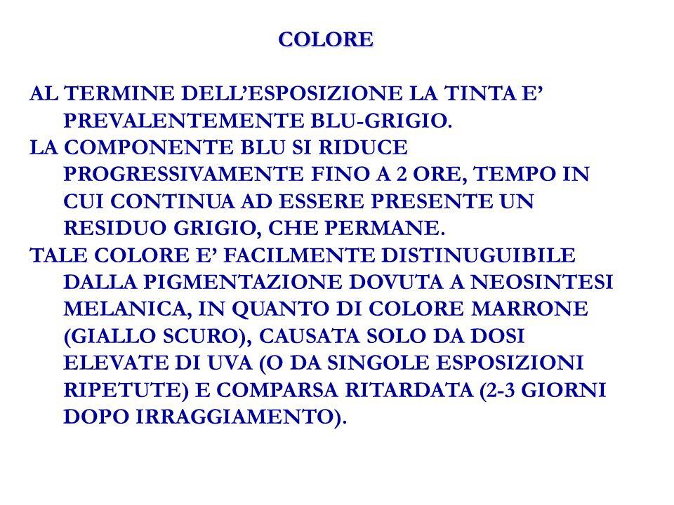 COLORE AL TERMINE DELLESPOSIZIONE LA TINTA E PREVALENTEMENTE BLU-GRIGIO.