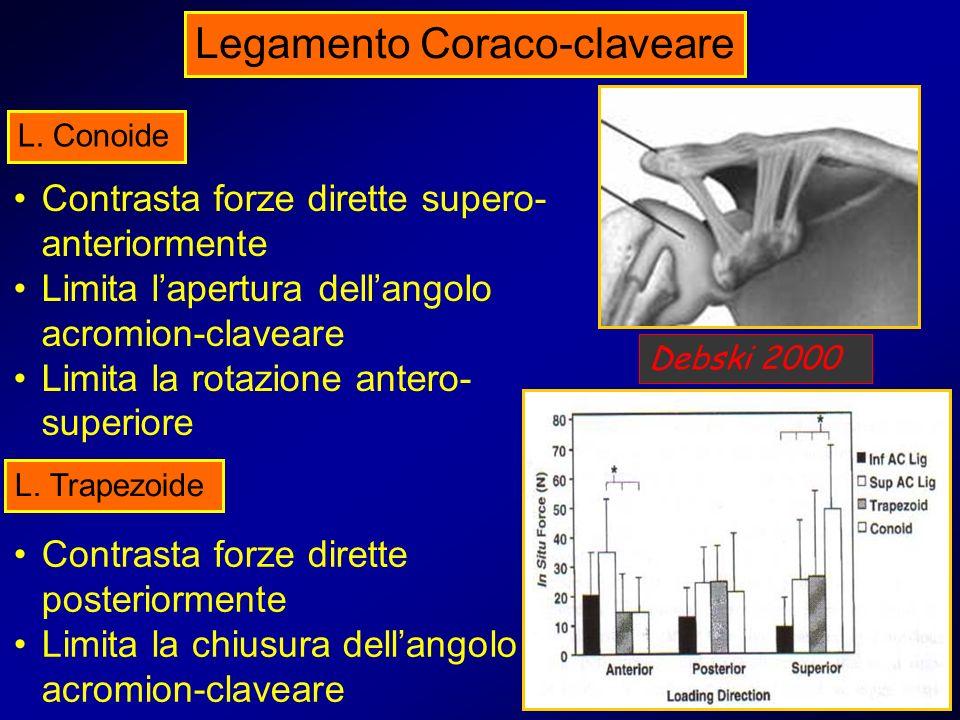 Contrasta forze dirette supero- anteriormente Limita lapertura dellangolo acromion-claveare Limita la rotazione antero- superiore L. Conoide L. Trapez