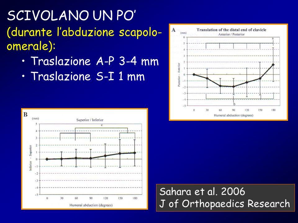 SCIVOLANO UN PO (durante labduzione scapolo- omerale): Traslazione A-P 3-4 mm Traslazione S-I 1 mm Sahara et al. 2006 J of Orthopaedics Research