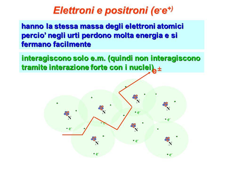interagiscono solo e.m. (quindi non interagiscono tramite interazione forte con i nuclei) hanno la stessa massa degli elettroni atomici percio negli u