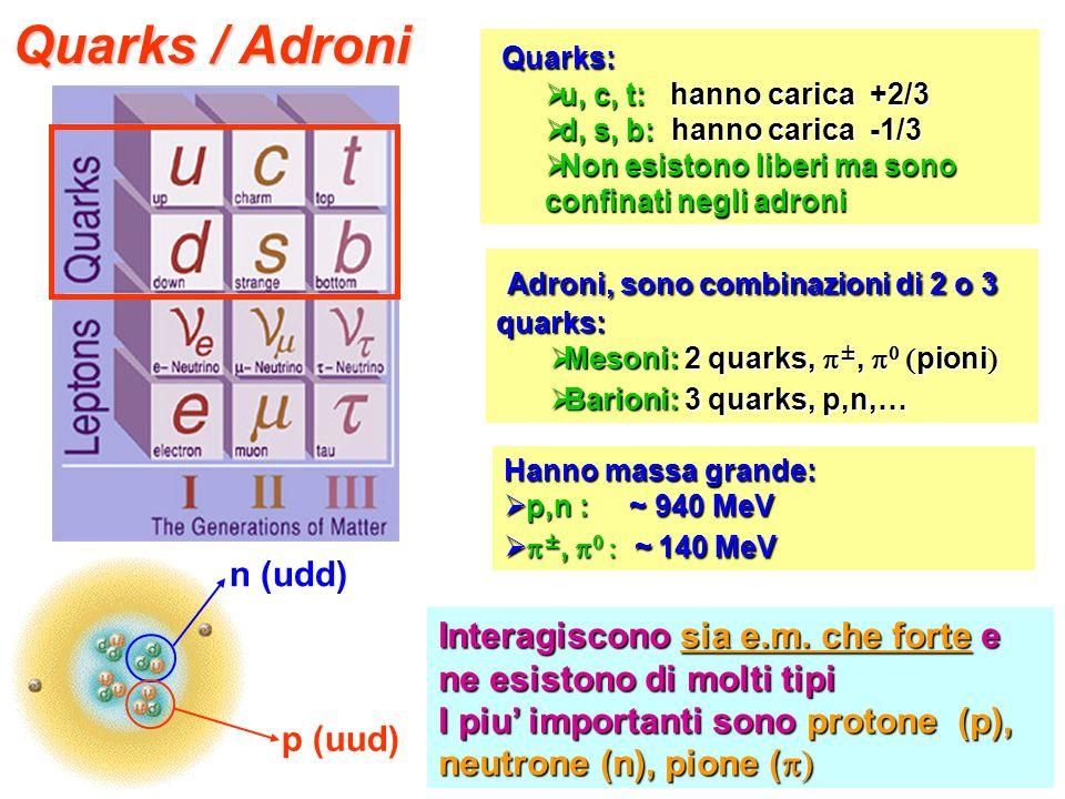 Quarks / Adroni Quarks: Quarks: u, c, t: hanno carica +2/3 u, c, t: hanno carica +2/3 d, s, b: hanno carica -1/3 d, s, b: hanno carica -1/3 Non esisto