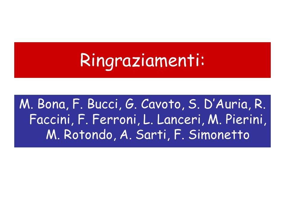 Ringraziamenti: M. Bona, F. Bucci, G. Cavoto, S. DAuria, R. Faccini, F. Ferroni, L. Lanceri, M. Pierini, M. Rotondo, A. Sarti, F. Simonetto