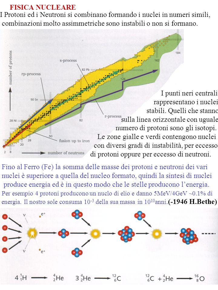 18 FISICA NUCLEARE I Protoni ed i Neutroni si combinano formando i nuclei in numeri simili, combinazioni molto assimmetriche sono instabili o non si f