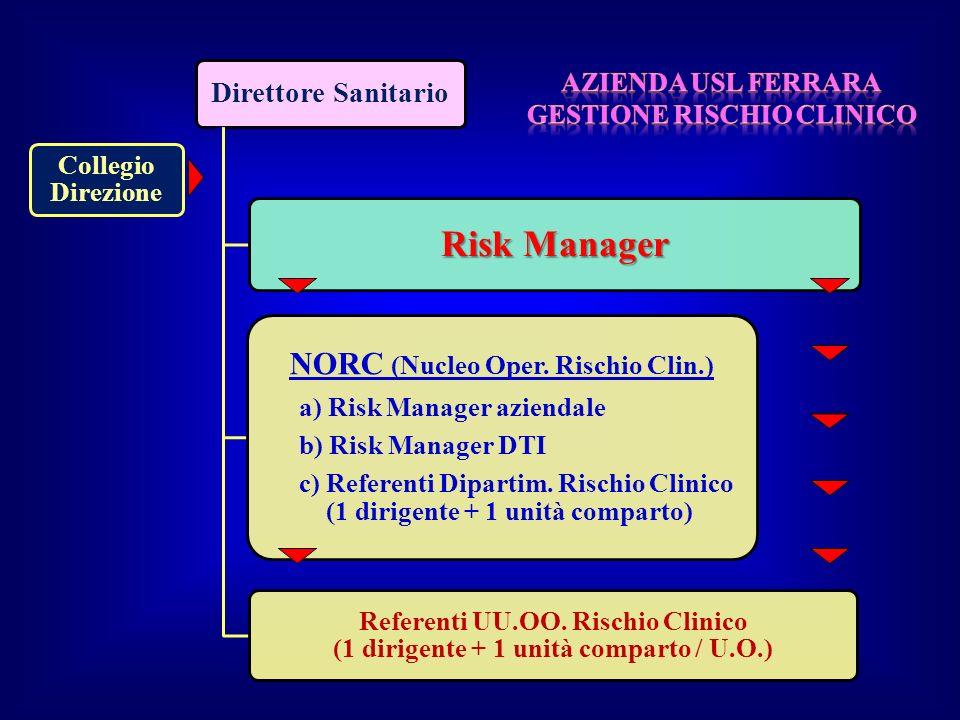 Direttore Sanitario Collegio Direzione Risk Manager NORC (Nucleo Oper. Rischio Clin.) a) Risk Manager aziendale b) Risk Manager DTI c) Referenti Dipar