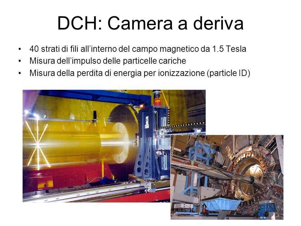 DCH: Camera a deriva 40 strati di fili allinterno del campo magnetico da 1.5 Tesla Misura dellimpulso delle particelle cariche Misura della perdita di