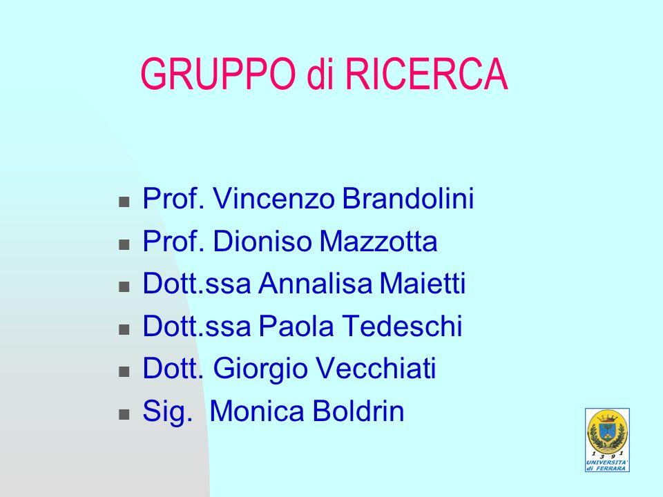 GRUPPO di RICERCA Prof. Vincenzo Brandolini Prof.