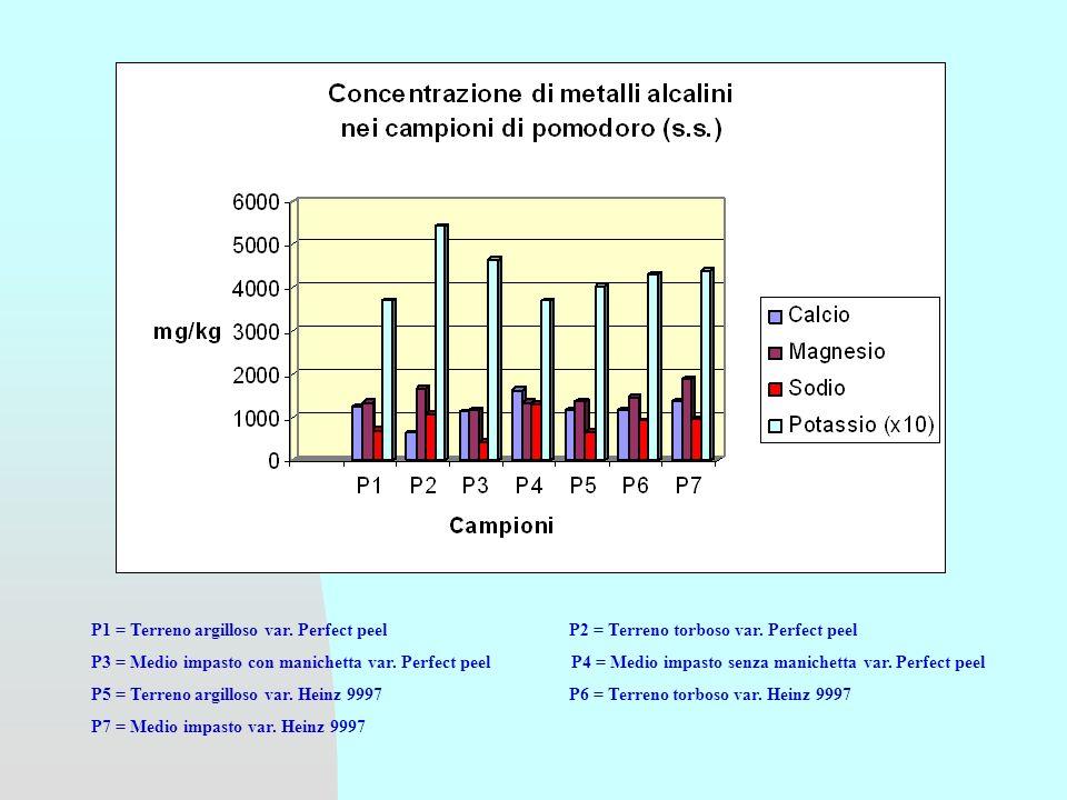 GRUPPO di RICERCA Prof.Vincenzo Brandolini Prof.