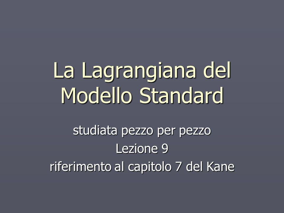 La Lagrangiana del Modello Standard studiata pezzo per pezzo Lezione 9 riferimento al capitolo 7 del Kane
