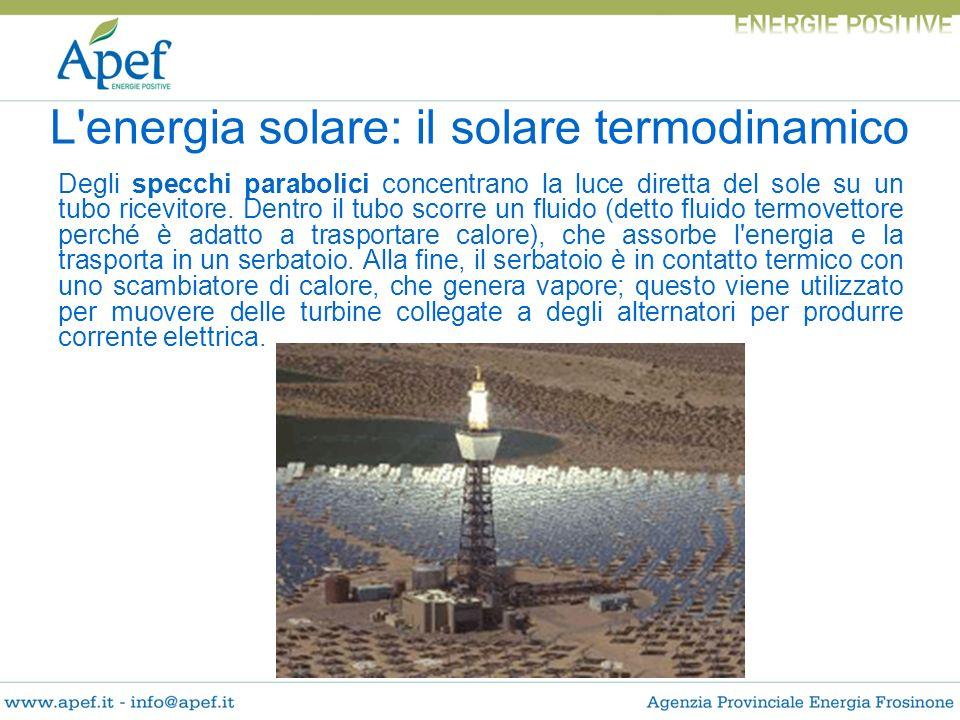 Degli specchi parabolici concentrano la luce diretta del sole su un tubo ricevitore. Dentro il tubo scorre un fluido (detto fluido termovettore perché