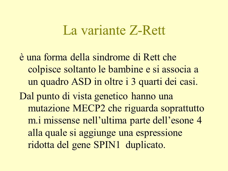 La variante Z-Rett è una forma della sindrome di Rett che colpisce soltanto le bambine e si associa a un quadro ASD in oltre i 3 quarti dei casi. Dal