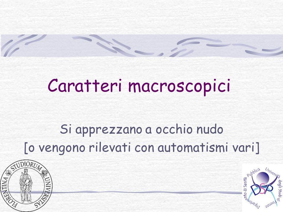 Caratteri macroscopici Si apprezzano a occhio nudo [o vengono rilevati con automatismi vari]