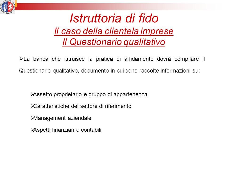 Istruttoria di fido Il caso della clientela imprese Il Questionario qualitativo La banca che istruisce la pratica di affidamento dovrà compilare il Qu