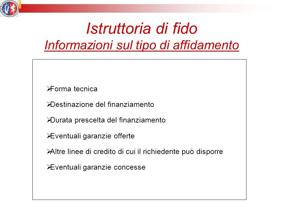 Istruttoria di fido Informazioni sul tipo di affidamento Forma tecnica Destinazione del finanziamento Durata prescelta del finanziamento Eventuali gar