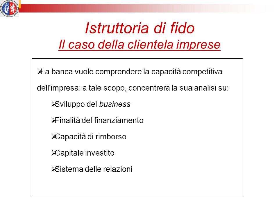 Istruttoria di fido Il caso della clientela imprese La banca vuole comprendere la capacità competitiva dell'impresa: a tale scopo, concentrerà la sua
