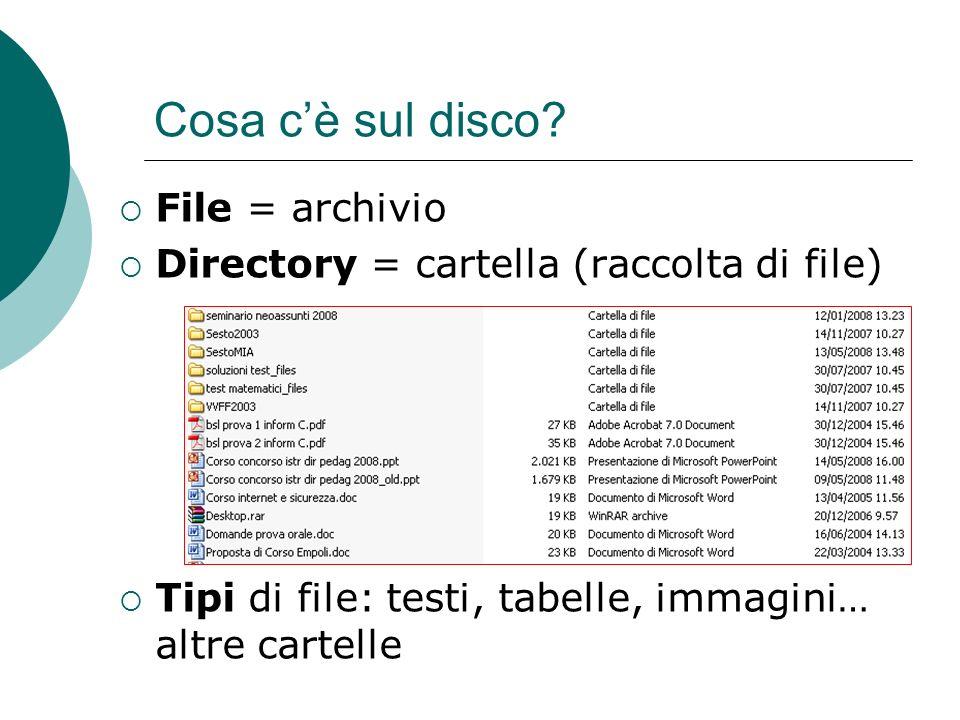 File = archivio Directory = cartella (raccolta di file) Tipi di file: testi, tabelle, immagini… altre cartelle Cosa cè sul disco?