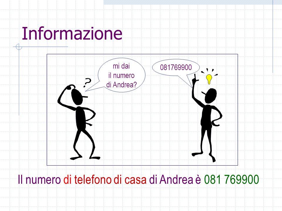 Informazione Attributo (significato): il numero di telefono di casa di Andrea Valore: 081769900 Elemento spesso implicito: linsieme a cui appartiene il valore (Tipo) sequenza di cifre Convenzione per la manipolazione del valore: codifica