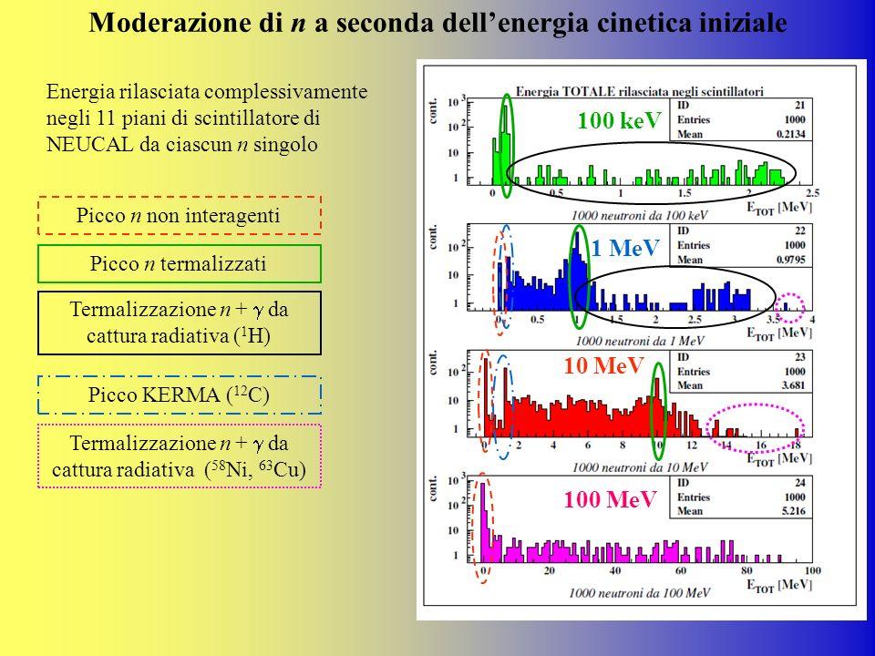 Moderazione di n a seconda dellenergia cinetica iniziale Picco n non interagenti Picco n termalizzati Termalizzazione n + da cattura radiativa ( 1 H)