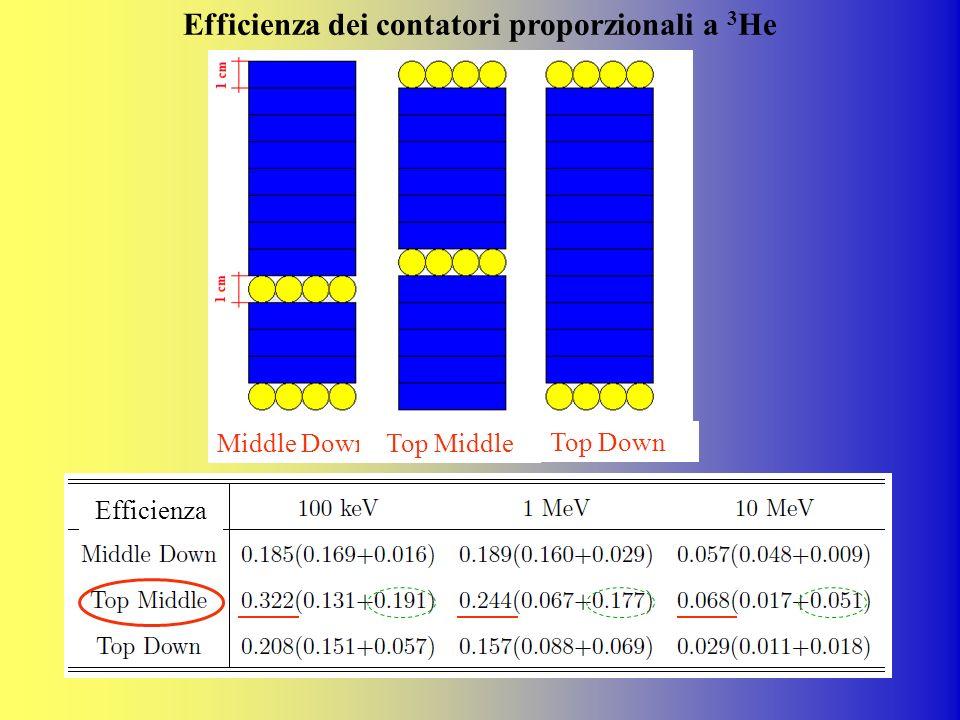Middle DownTop Middle Top Down Efficienza dei contatori proporzionali a 3 He Efficienza
