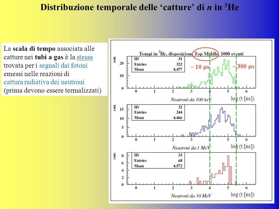 Distribuzione temporale delle catture di n in 3 He ~ 300 s ~ 10 s La scala di tempo associata alle catture nei tubi a gas è la stessa trovata per i se