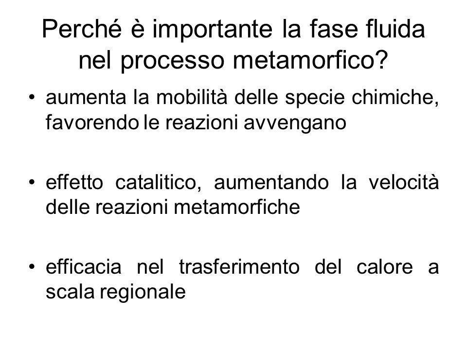 Quantità della Fase Fluida La quantità della fase fluida è funzione della mineralogia originaria e della Temperatura alla quale avviene il metamorfismo.