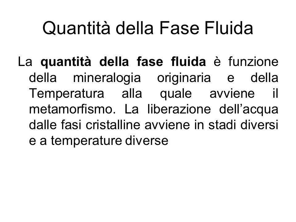 Quantità della Fase Fluida La quantità della fase fluida è funzione della mineralogia originaria e della Temperatura alla quale avviene il metamorfism