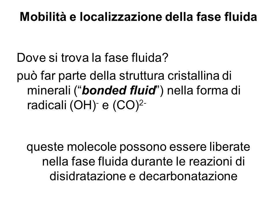 Mobilità e localizzazione della fase fluida Dove si trova la fase fluida? può far parte della struttura cristallina di minerali (bonded fluid) nella f